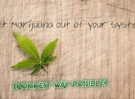 get Marijuana out of system