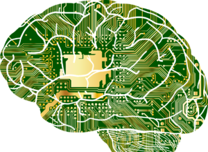 memory in brain