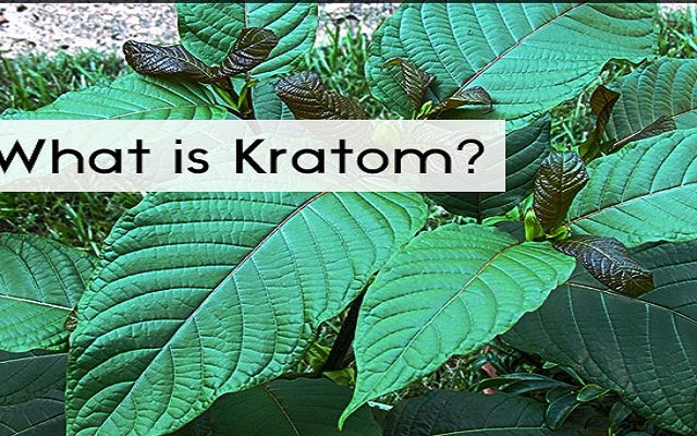 what-is-kratom