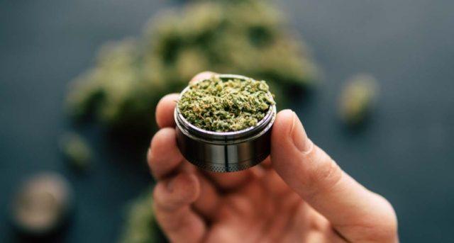 marijuana_0